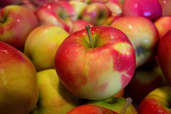 apples 490474 1280  pixabay