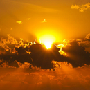 Skabelsen  Aktivitet  Solnedgang  COLOURBOX1758172