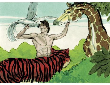Forloeb  urhistorien  Adam og dyrene  Book of Genesis Chapter 1 8  Bible Illustrations by Sweet Media   wiki